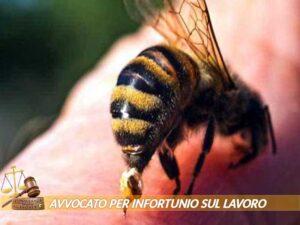 avvocati esperti per risarcimento danni da infortunio sul lavoro a Ivrea Torino
